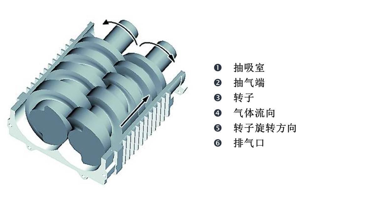 莱宝SP干式螺杆真空泵工作原理